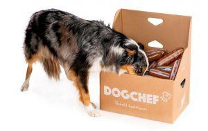 huisdier-abonnement-box-dogchef-hond